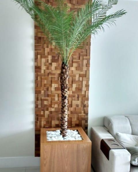 vaso de madeira com palmeira fenix