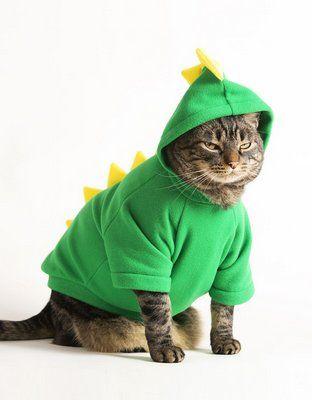 roupa de gato estilo fantasia de dinossauro