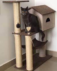arranhador para gatos de casinha