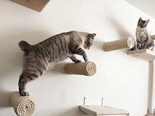 arranhador para gatos de parede