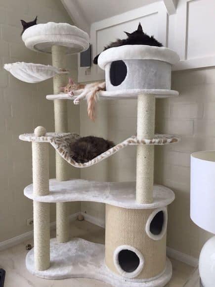 arranhador para gatos ideias com casinha