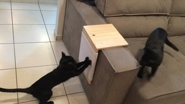 arranhador para gatos pequeno 2