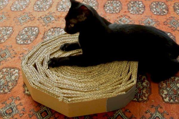 arranhador para gatos redondo