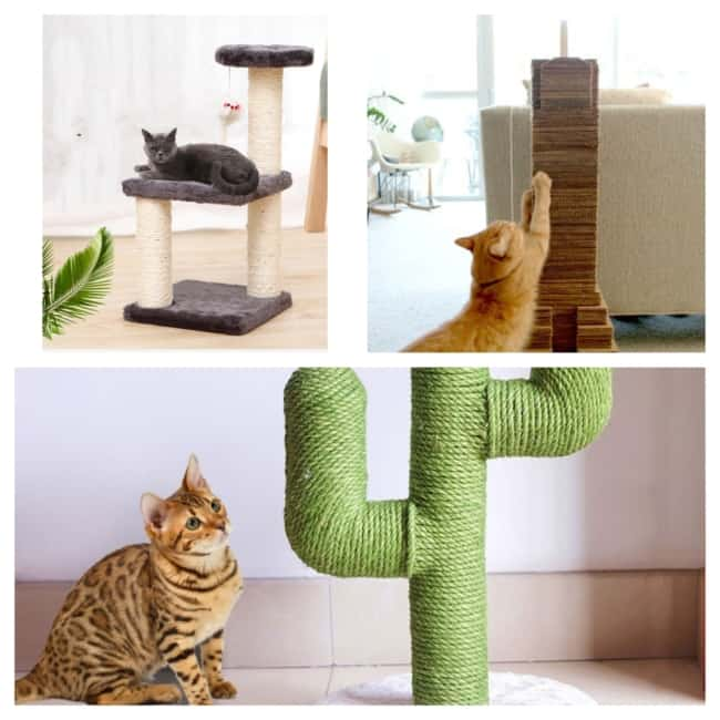 estilos de Arranhador para gatos