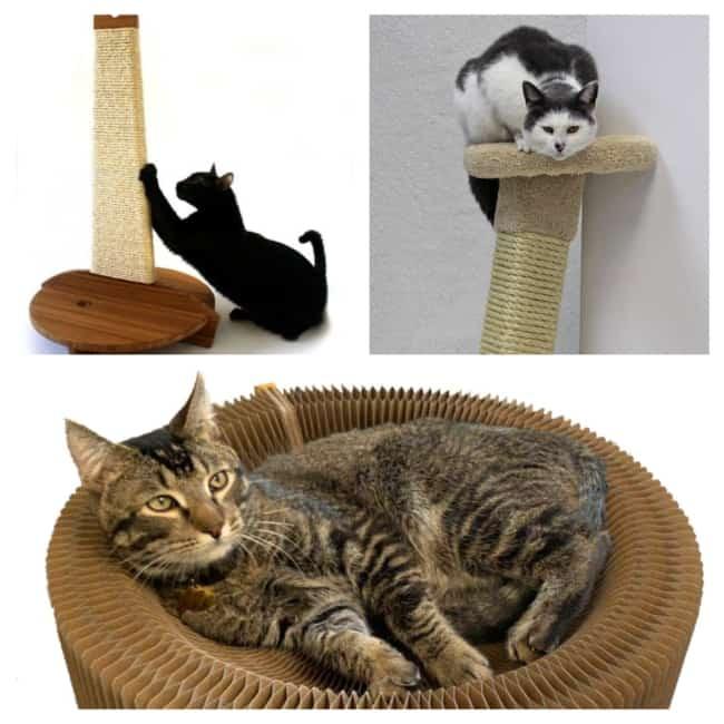 modelos de Arranhador para gatos 2