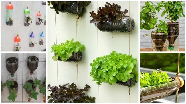 ideias de horta com garrafa pet