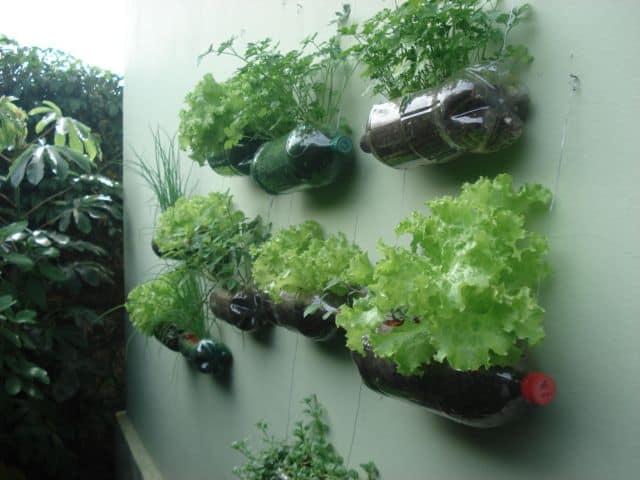 muro com horta suspensa