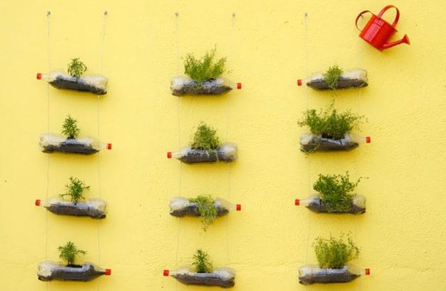 horta no muro com garrafas plasticas