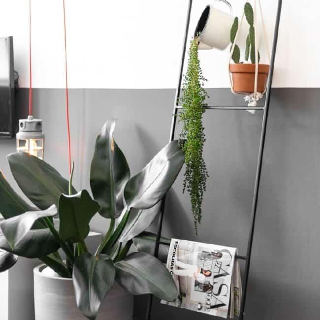 escada decorativa de metal com plantas e revista na decoracao