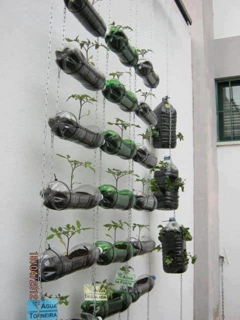 horta suspensa com garrafas plasticas