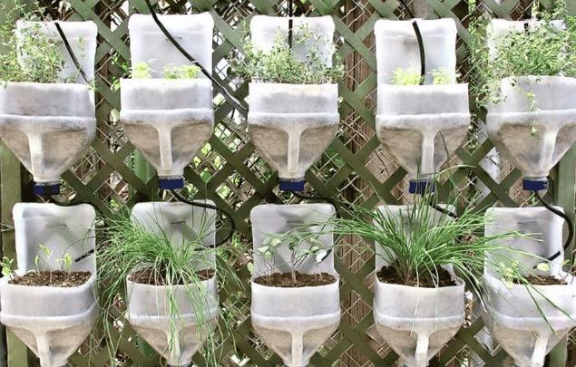 horta vertical com garrafas plasticas grandes