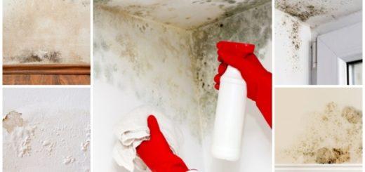 como tirar umidade da parede