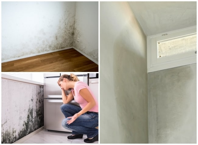 causas da umidade na parede