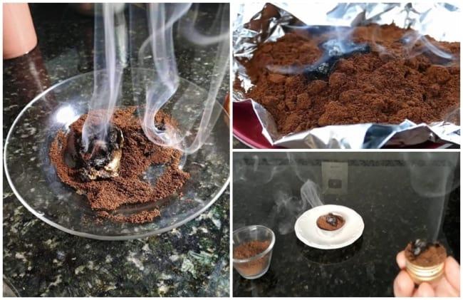 receita com cafe para espantar moscas