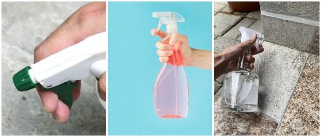 receita com detergente para acabar com formigas