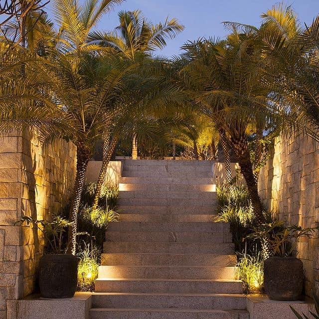 O jardim iluminado conta com uma grande escada em meio as arvores