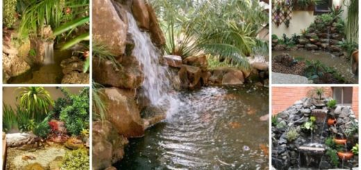 cascata para jardim