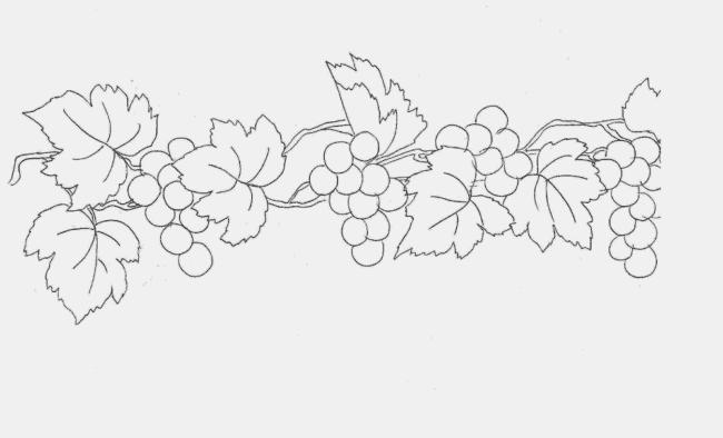 risco de uvas para pintura em tecido