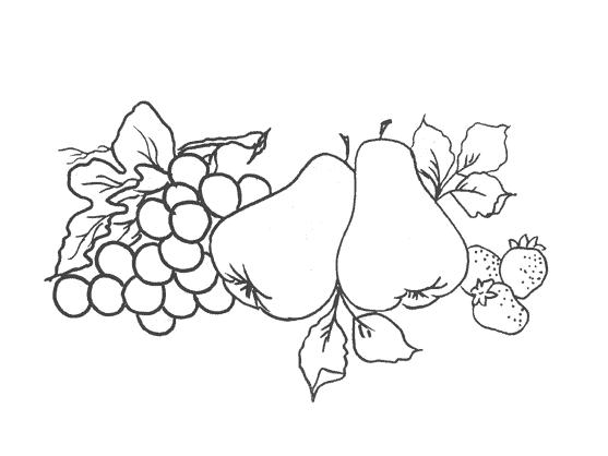 risco de frutas para pintura em tecido