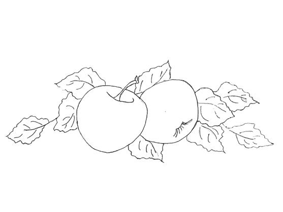 risco simples de frutas para pintura em tecido