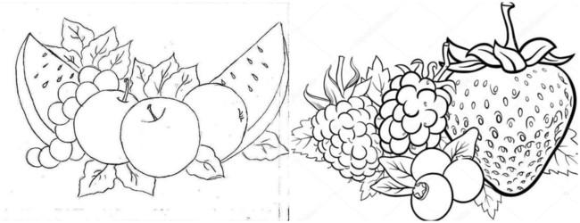 desenhos de frutas para pinturas em tecido