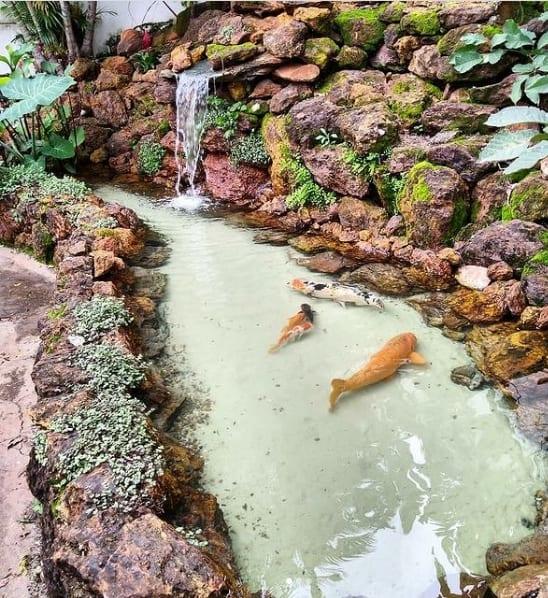 jardim pequeno com mini lago de carpas e cascata de pedras