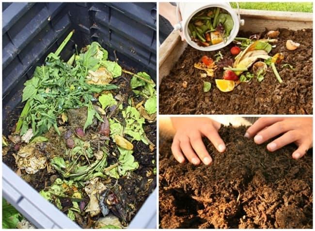tipo de adubo organico com compostagem