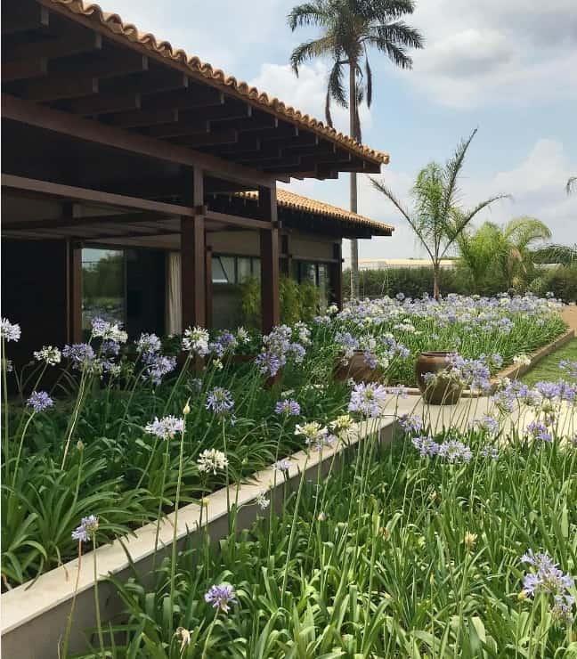 fachada de casa com agapanto no jardim
