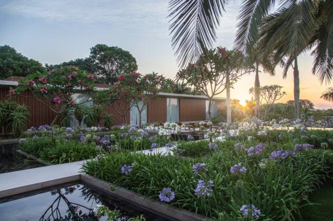 jardim com argapantos lilas e branco