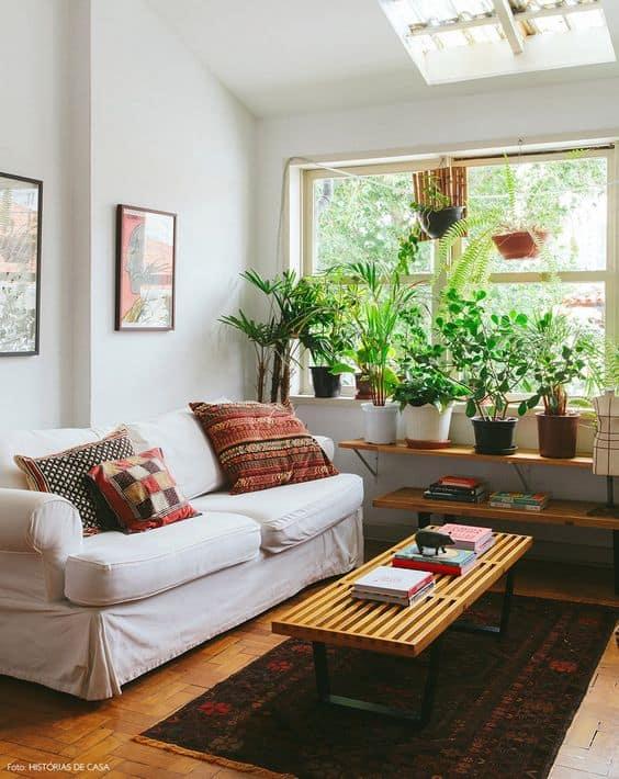 como usar plantas na decoracao da sala
