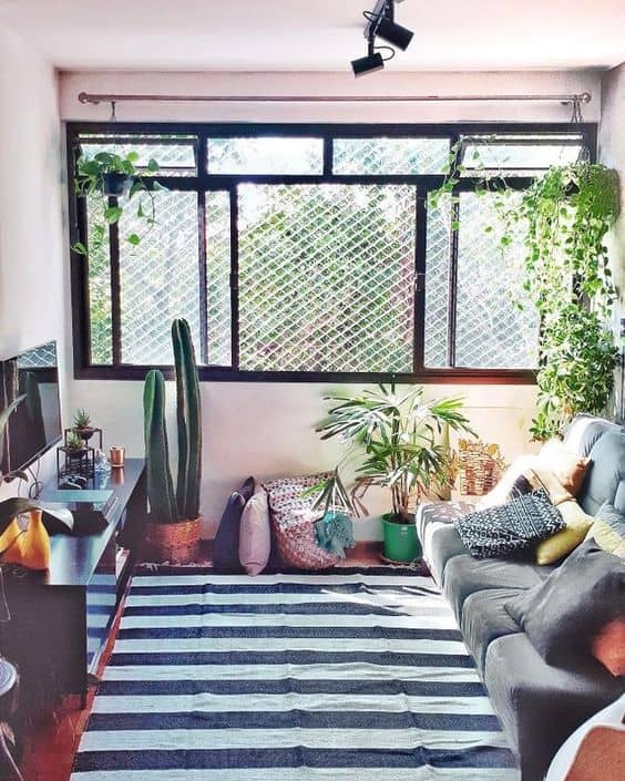 sala pequena com plantas