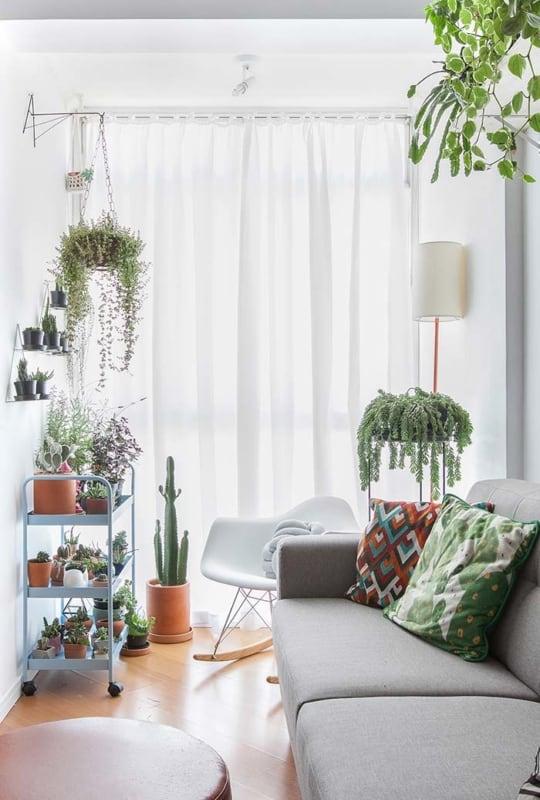sala pequena feng shui com plantas