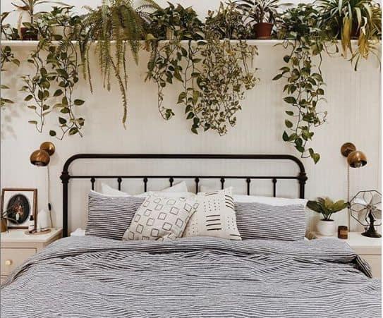 quarto decorado com plantas pendentes