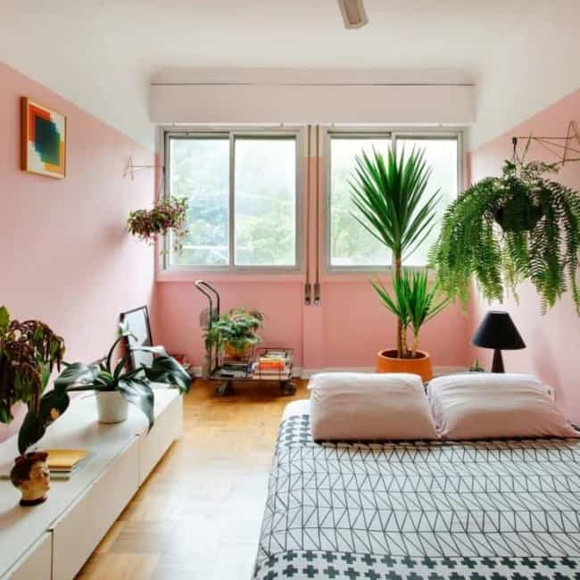 quarto com paredes cor de rosa e decorado com plantas
