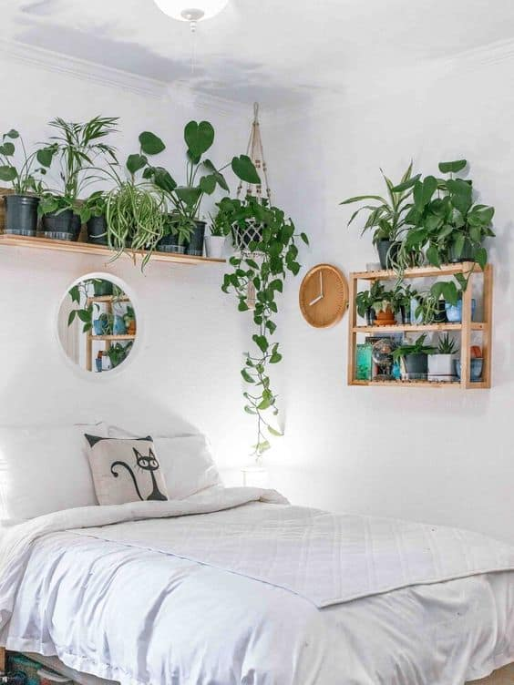quarto simples decorado com plantas