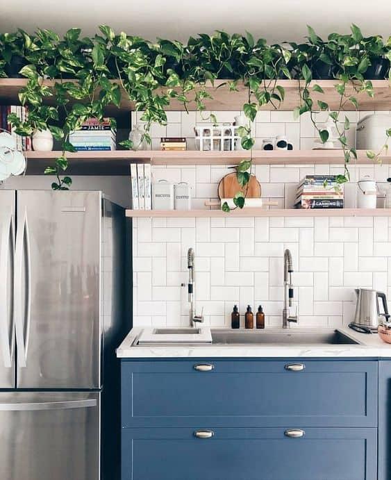 cozinha decorada com plantas pendentes