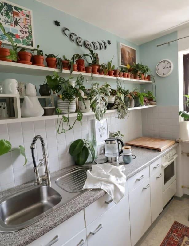 cozinha com prateleira e vasinhos de plantas