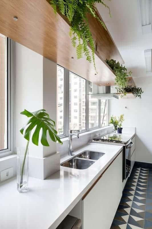 cozinha pequena com vasos de plantas