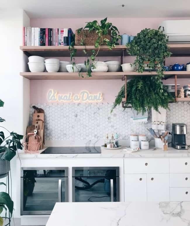 decoracao de cozinha com prateleiras e plantas