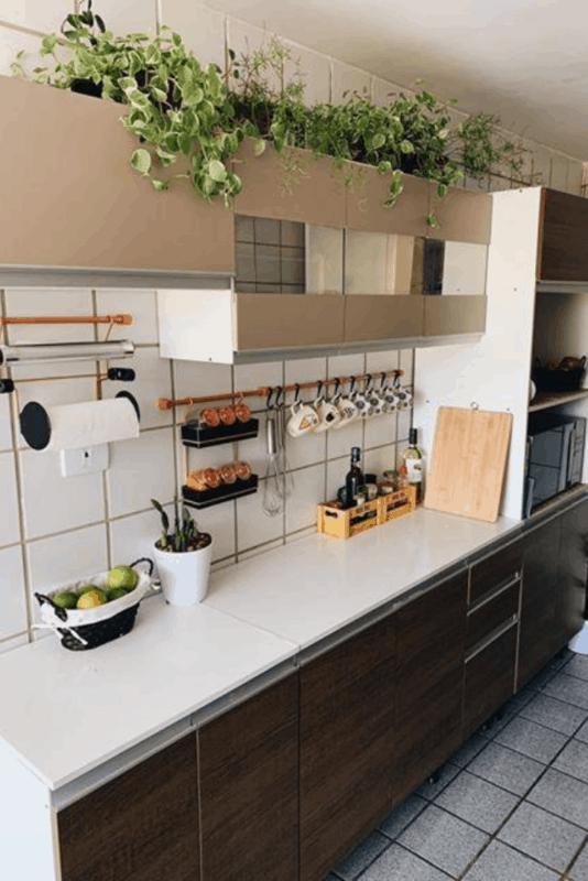 cozinha simples decorada com plantas pendentes