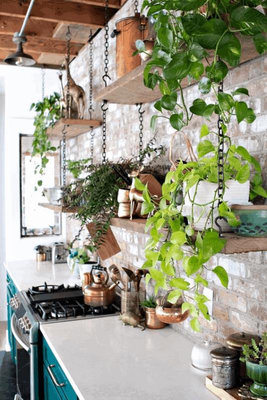 cozinha rustica decorada com plantas
