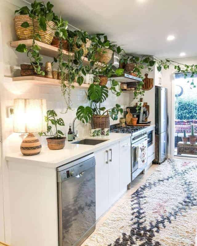 cozinha urban jungle