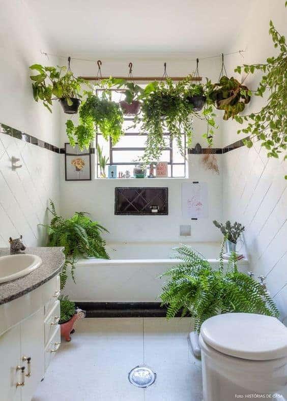 banheiro decorado com plantas pendentes