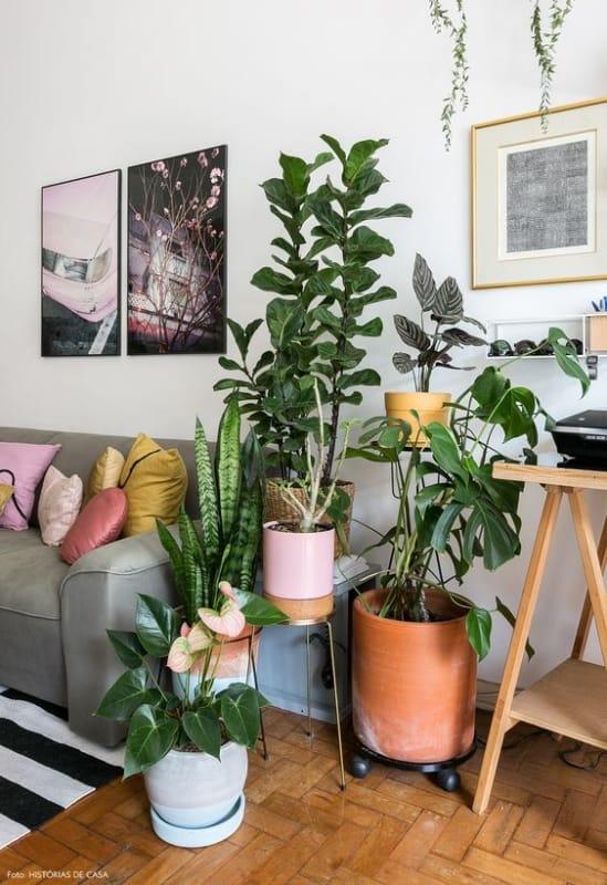 sala urban jungle com sofa cinza