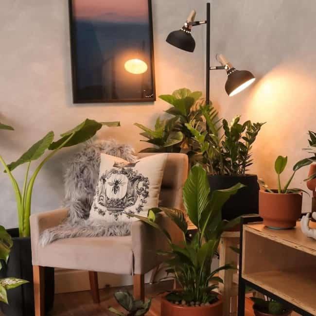 sala urban jungle com tinta cimento queimado