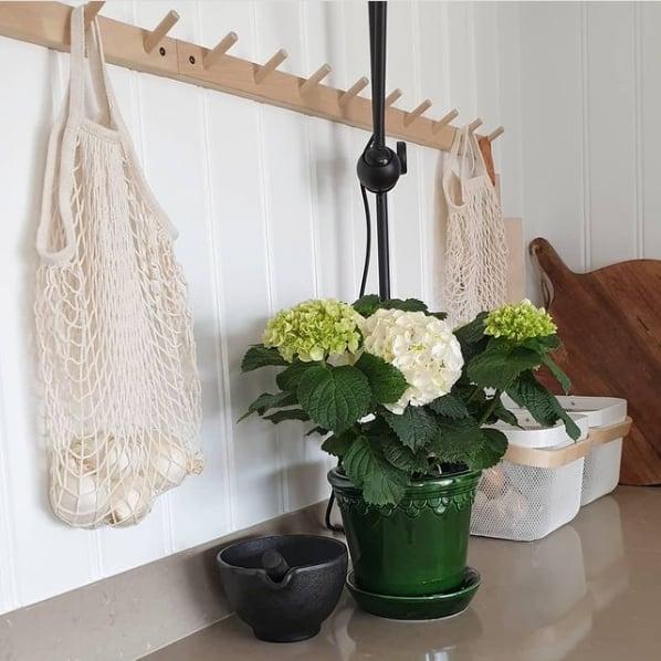 decoracao com hortensia em vaso pequeno