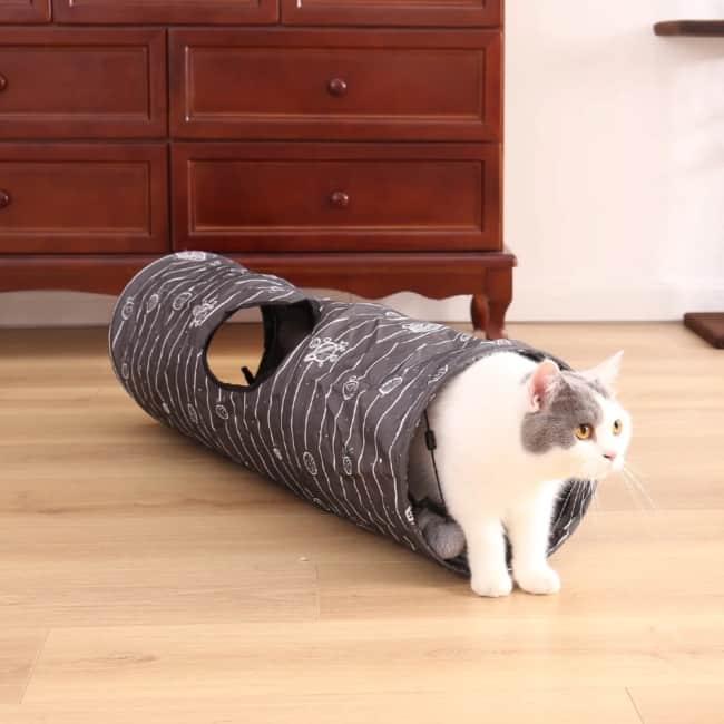 tunel simples para gato brincar