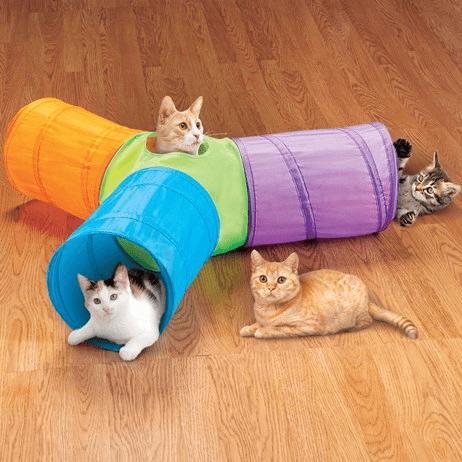 tunel para gato com 3 caminhos