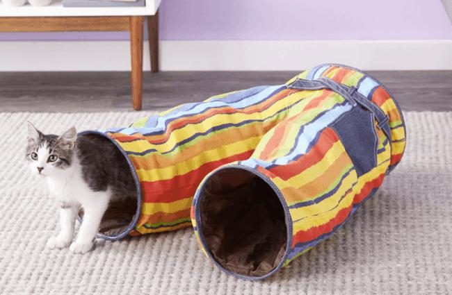tunel diferente para gatos