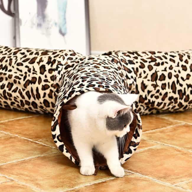 tunel para gatos em Y